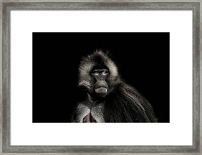 The Young Warrior Framed Print