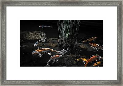 Framed Print featuring the photograph The Zen Of Koi by Glenn DiPaola