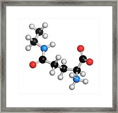 Theanine Herbal Molecule Framed Print by Molekuul
