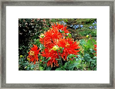 Theatre Garden Framed Print by Christopher Bage