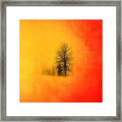 Thee Tree  Framed Print