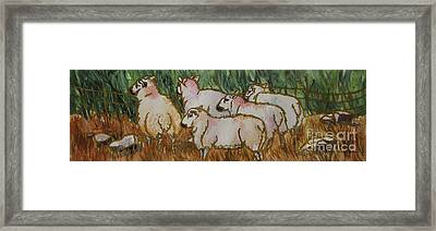 The_grass_is_greener Framed Print by Nancy Newman