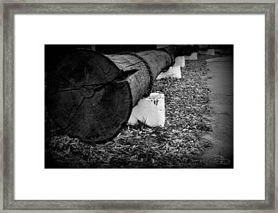 Thelog Framed Print