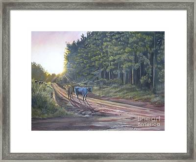 Them Cows Is Out Again Framed Print by Callie Smith
