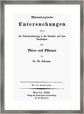 Theodor Schwann (1810-1882) Framed Print by Granger