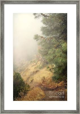 Framed Print featuring the photograph There And Back Again 2 by Ellen Cotton