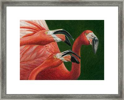 There Are Always Critics Framed Print by Pat Erickson