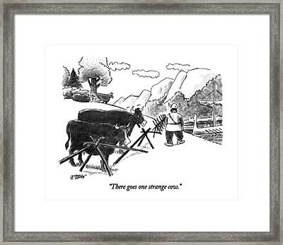 There Goes One Strange Cow Framed Print by Peter Steiner