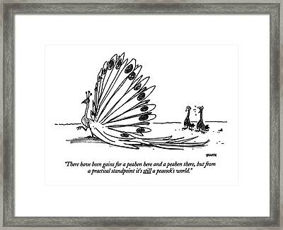 There Have Been Gains For A Peahen Here Framed Print by George Booth