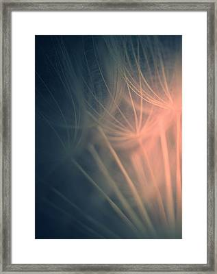 There Is Light Framed Print