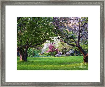 There Is No Place Like Spring Framed Print