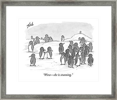 There's A Group Of Penguins And Two Penguins Framed Print