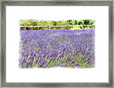 Framed Print featuring the photograph There's Flowers For You by Ryan Weddle