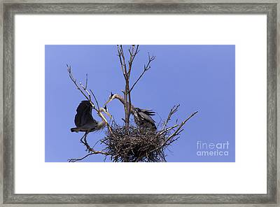 There's No Place Like Home Framed Print by Mary Lou Chmura
