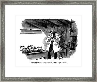 There's Splendid News From The F.d.a Framed Print