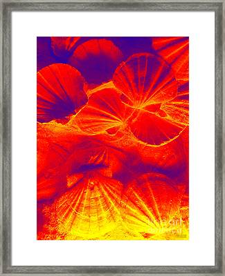 Framed Print featuring the photograph Thermal Shells by Hanza Turgul