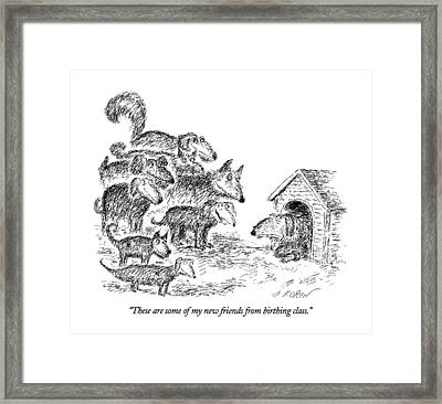 These Are Some Of My New Friends From Birthing Framed Print by Edward Koren