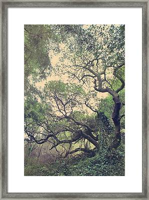 These Hands Framed Print by Laurie Search