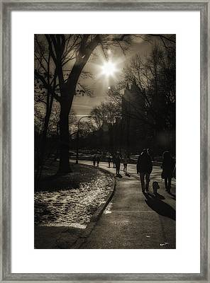 They Come To Central Park Framed Print by Madeline Ellis