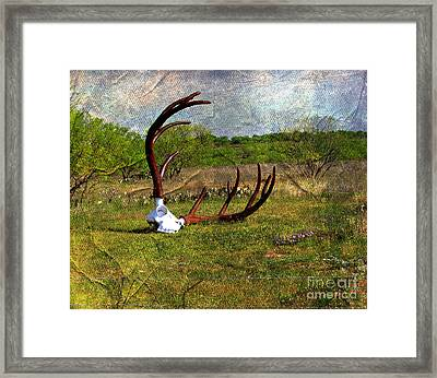 They Grow Them Big In Texas Framed Print