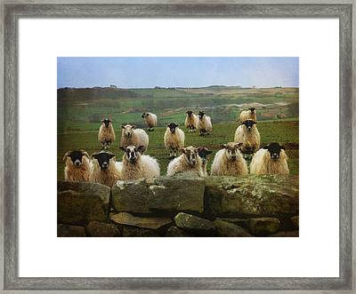 They Must Think They're Getting Fed Framed Print