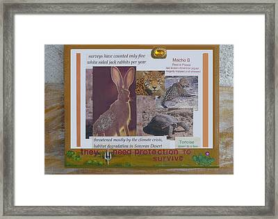 They Need Protection To Survive Framed Print by Mary Ann  Leitch