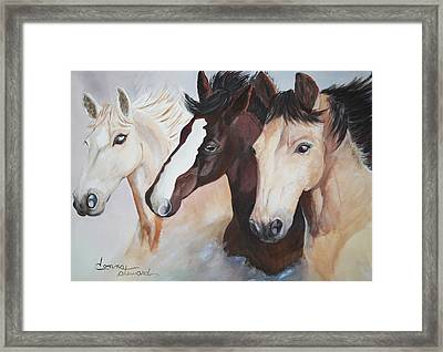They Run Wild Framed Print by Donna Steward