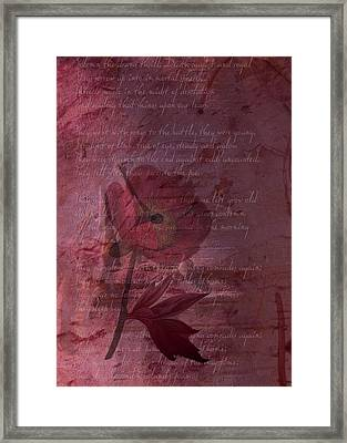 They Shall Grow Not Old Framed Print by Sarah Vernon
