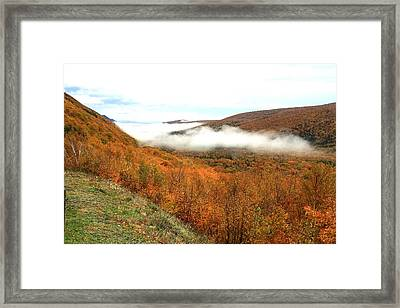 Thick Fog Framed Print by Jason Lees