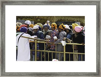 Thick Queue Of Devotees Inside The Golden Temple In Amritsar Framed Print by Ashish Agarwal