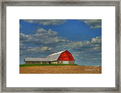 Things Unnoticed At The Time Framed Print by Lois Bryan