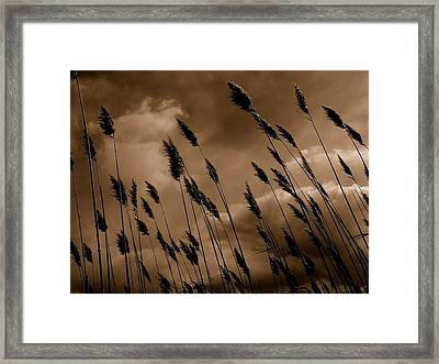 Thinker Framed Print by Andrea Galiffi