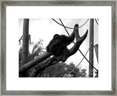 Framed Print featuring the photograph Thinking Of You Black And White by Joseph Baril