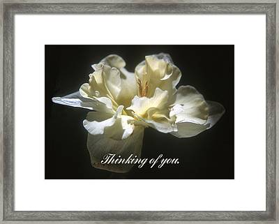 Thinking Of You. Framed Print