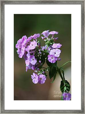 Thinking Of You Framed Print by Patti Whitten