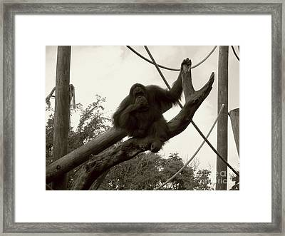 Framed Print featuring the photograph Thinking Of You Sepia by Joseph Baril