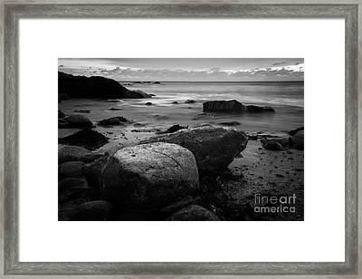 Thinking Spot Framed Print by Sue OConnor