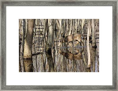 Thirsty For God Framed Print by Lorna Rogers Photography