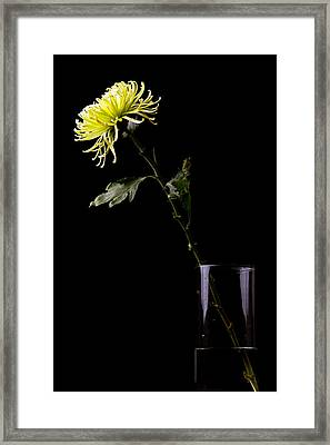 Framed Print featuring the photograph Thirsty by Sennie Pierson