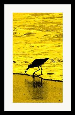 Sea Birds Digital Art Framed Prints