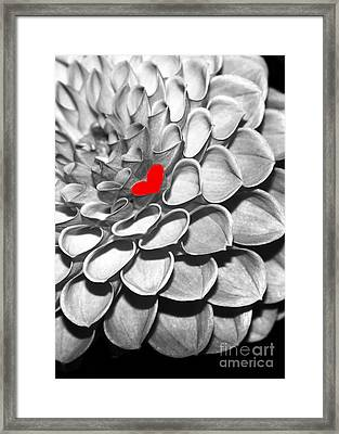 This Heart Is For You Framed Print by Sabrina L Ryan