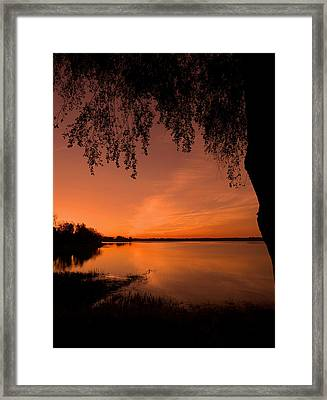This Is A New Day ... Framed Print
