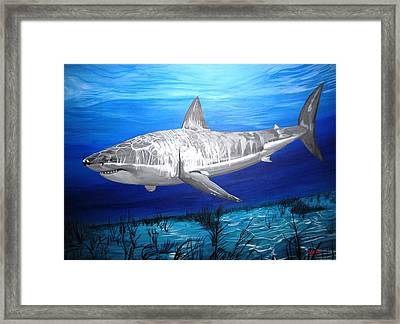 This Is A Shark Framed Print by Kevin F Heuman