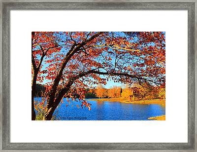 This Is Autumn - Signature Print Framed Print