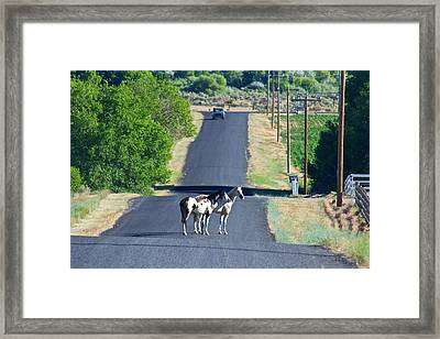 This Is Idaho Baby Tuttle Idaho Framed Print