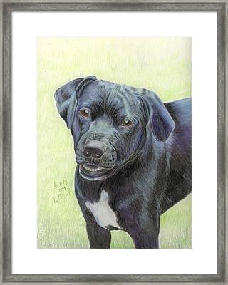 This Is Lindy Framed Print by Ruth Seal