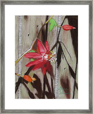 This Is My Passion - Flowers Framed Print