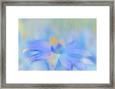 This Is Not Just Another Flower - S05a Framed Print by Variance Collections