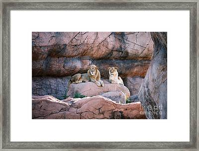 This Is Our Domain Framed Print