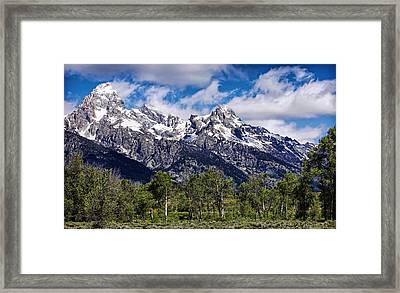 This Is That Perfect Day Framed Print